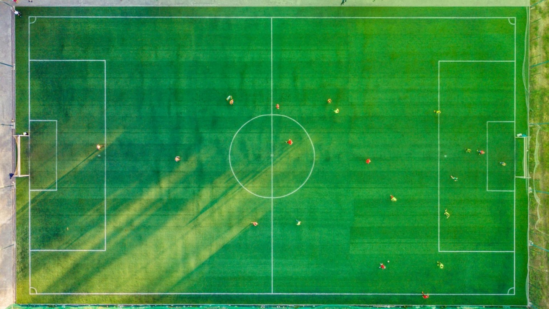 Carbon Neutrality in Football and Forest Green Rovers FC