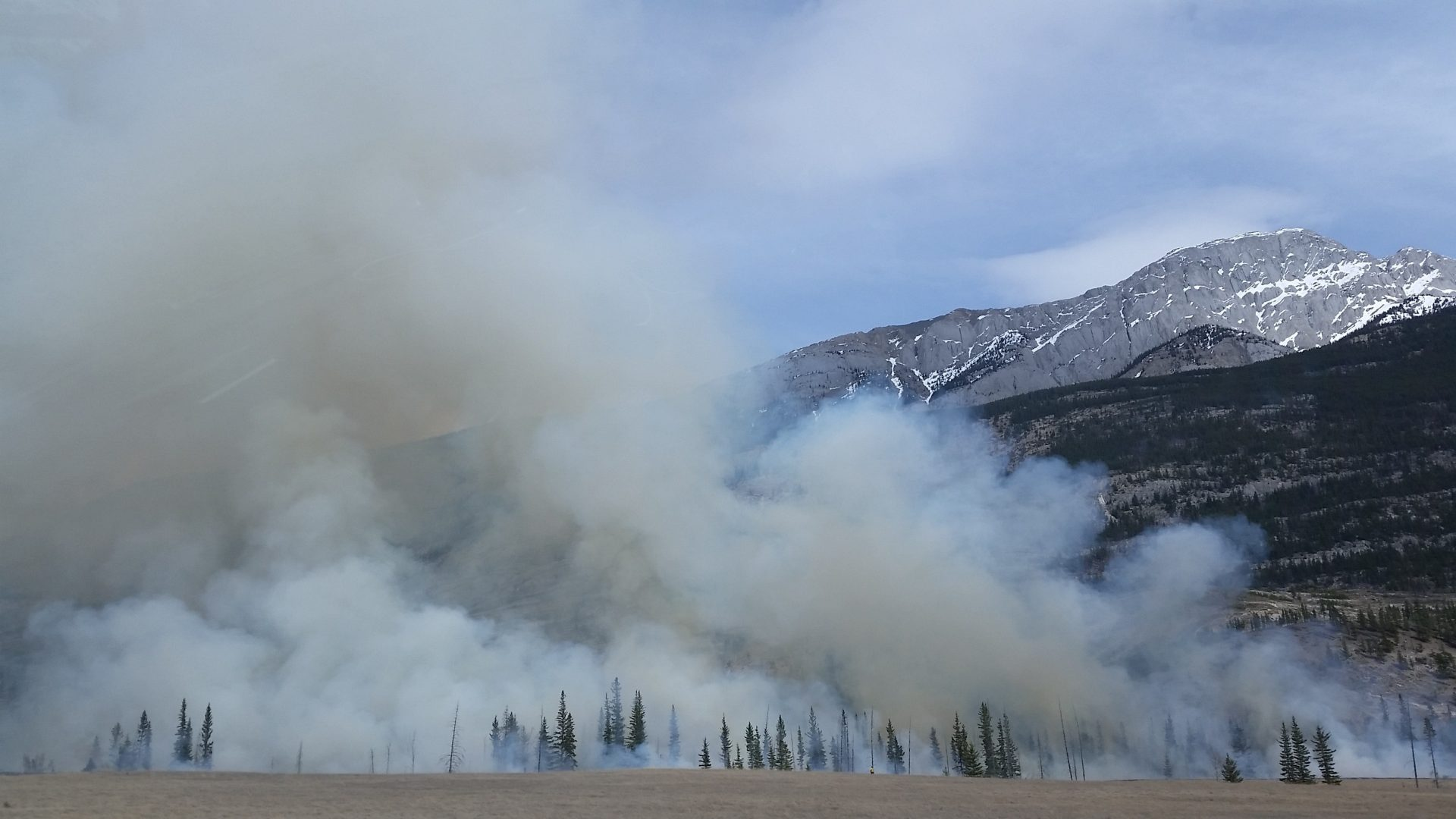 Forest fires and air pollution