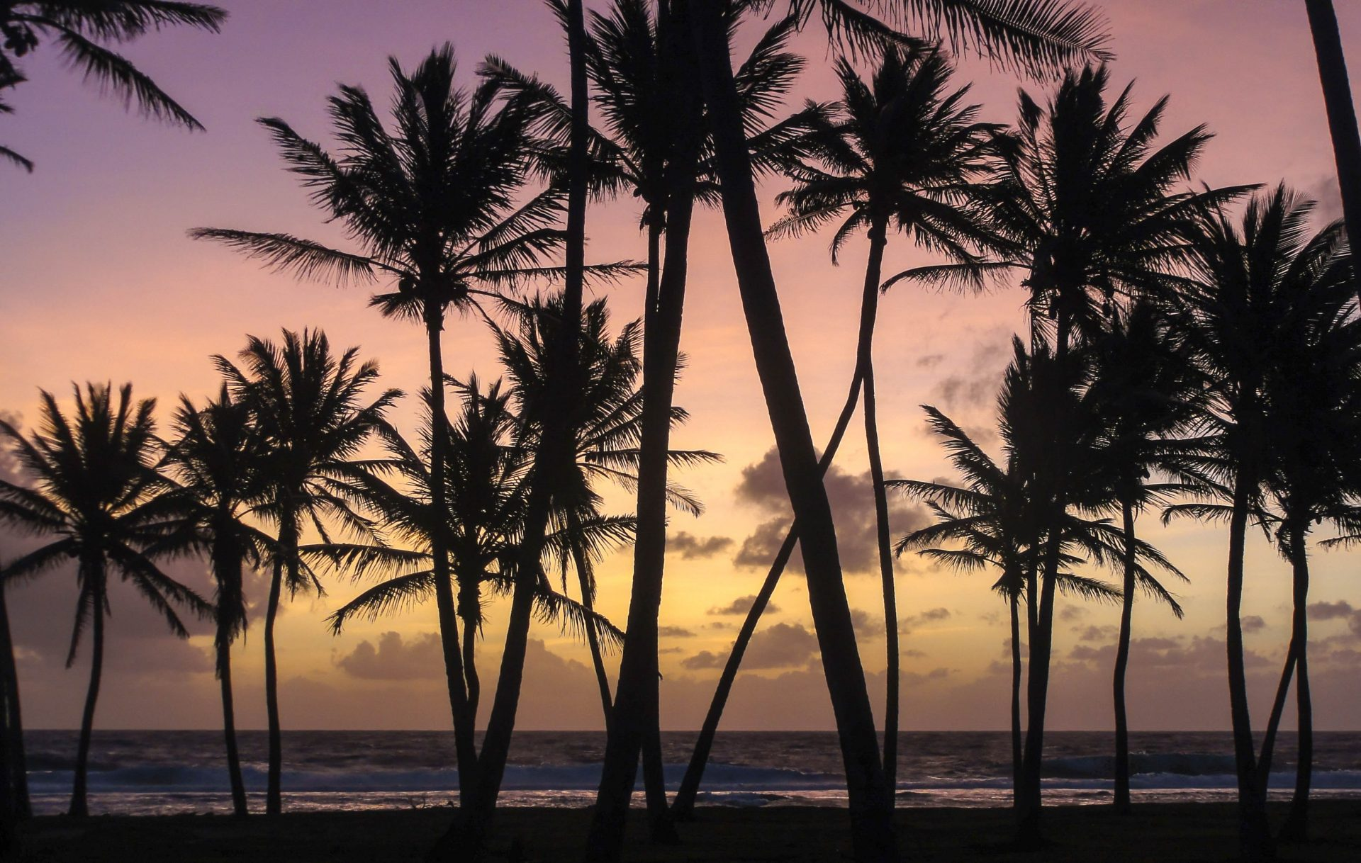 Climate Justice in The South Pacific: Why Treating Pacific Islanders as Victims Is Problematic